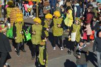 karneval2019_umzug_043
