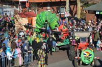 karneval2019_umzug_051