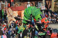 karneval2019_umzug_052